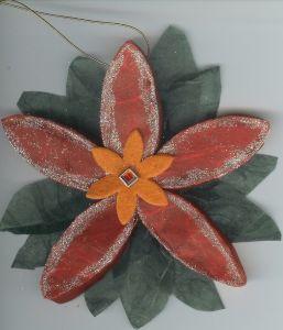 Poinsettia_1