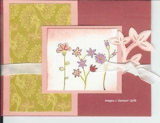 Raspberry_flowers