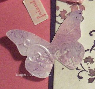 Shimmery_butterfly_close