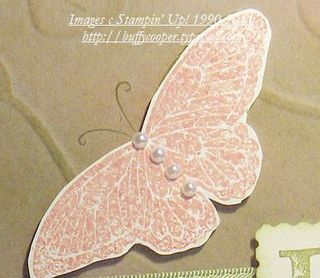 Butterfly_texture_hope_close